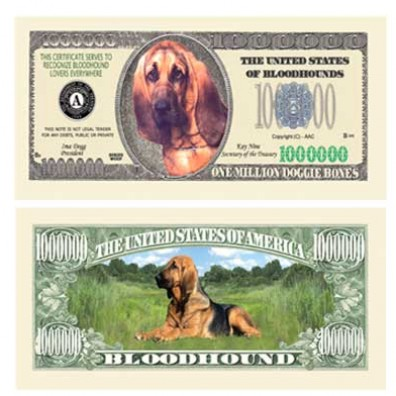 Dog_Bloodhounds